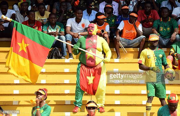 A fan painted in the colours of the Cameroon flag holds up the national flag during the 2015 African Cup of Nations qualifier group D football match...