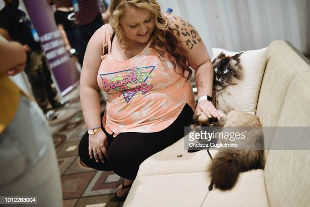 A fan pets Merlin Ragdoll during a meet and greet at CatCon Worldwide 2018 at Pasadena Convention Center on August 5 2018 in Pasadena California
