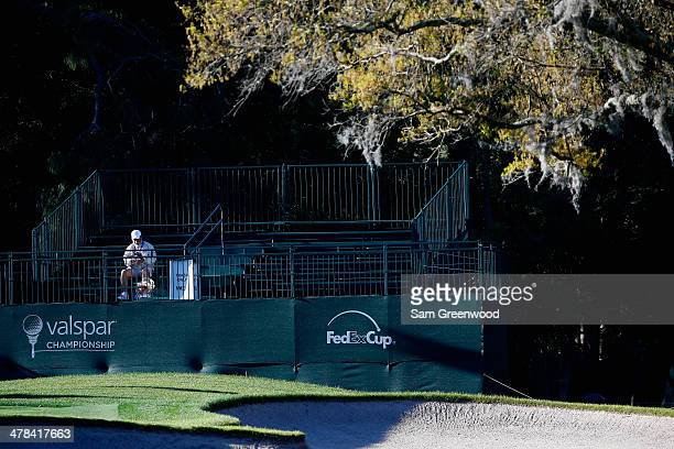 A fan sits in the stands during the first round of the Valspar Championship at Innisbrook Resort and Golf Club on March 13 2014 in Palm Harbor Florida
