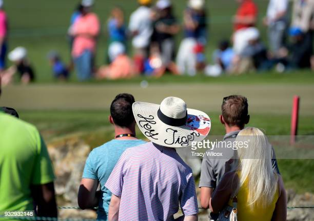A fan sports a hat for Tiger Woods during the second round of the Arnold Palmer Invitational presented by MasterCard at Bay Hill Club and Lodge on...