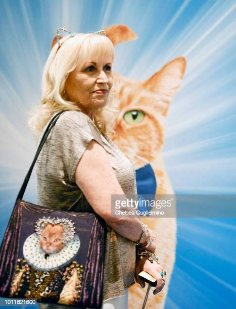 A fan waits in line for the Morris the Cat meet and greet at CatCon Worldwide 2018 at Pasadena Convention Center on August 5 2018 in Pasadena...