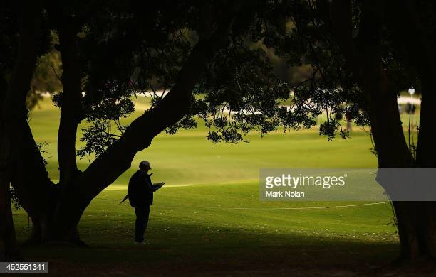 A fan waits under trees during day three of the Australian Open at Royal Sydney Golf Club on November 30 2013 in Sydney Australia