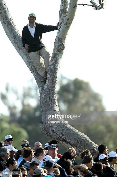 Fan watches the action from a tree by the 18th green during the final round of the Northern Trust Open at Riviera Country Club on February 19, 2012...