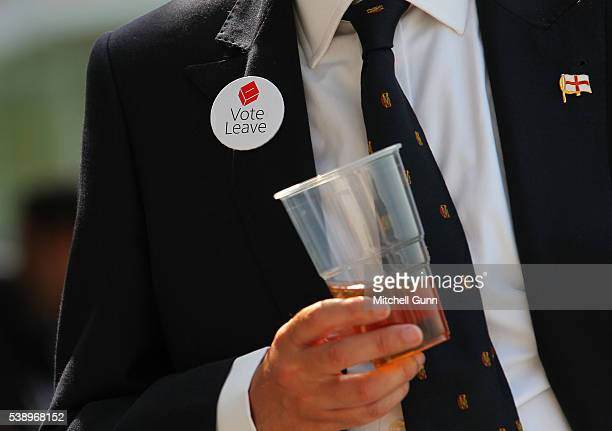 A fan wears a Brexit badge on his jacket during day one of the 3rd Investec Test match between England and Sri Lanka at Lords Cricket Ground on June...