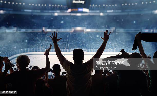 fanatical hockey fans at a stadium - ice hockey stock pictures, royalty-free photos & images