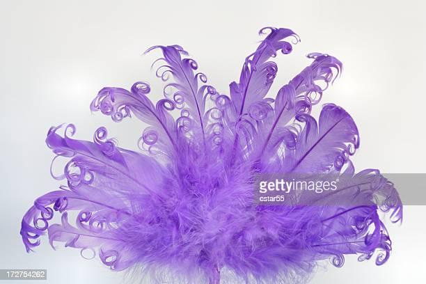 fancy lila feder-fan auf weißem hintergrund - feather fan stock-fotos und bilder