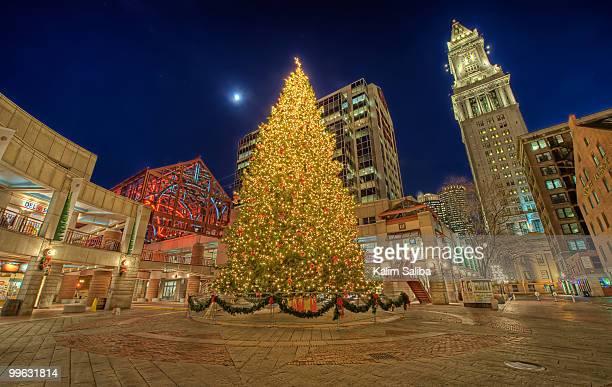 Faneuil Hall Christmas Tree