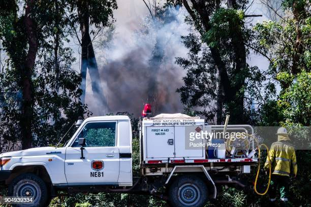 Fanned by gale force winds a large bushfire burning near Newcastle, NSW, Australia has forced the city's airport and Air Force base to close and...