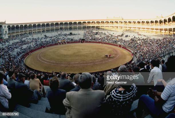 Fans at a Bullfight