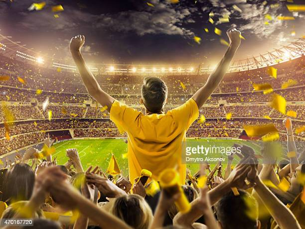 fans at stadium - sports team event stock photos and pictures