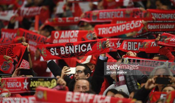 Fans cheer ahead of the Champions League round of 16 soccer match between SL Benfica and Borussia Dortmund in the Estádio da Luz in Lisbon Portugal...