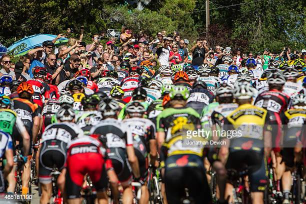 Fans cheer as the peloton makes its way up a climb during stage 5 of the Tour of Utah on August 7 2015 in Salt Lake City Utah