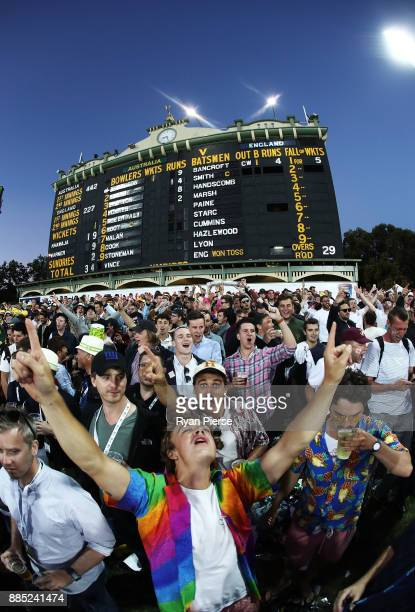 Fans cheer on the hill during day three of the Second Test match during the 2017/18 Ashes Series between Australia and England at Adelaide Oval on...