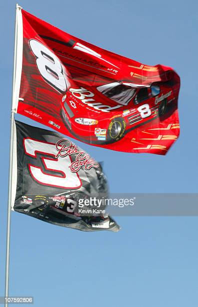 Fans fly flags of Dale Earnhardt Jr and Dale senior at practice for the Daytona 500 at Daytona International Speedway