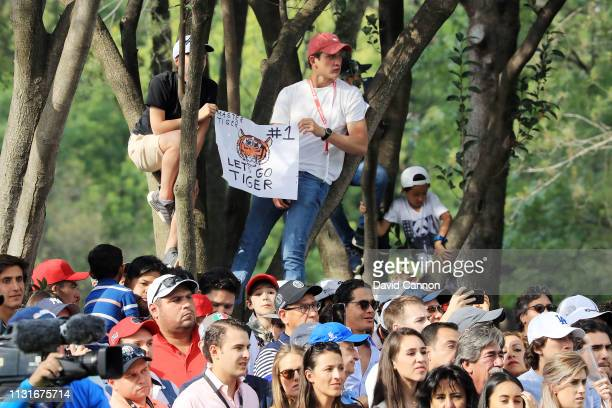 Fans in a tree hold a sign for Tiger Woods of the United States during the third round of World Golf ChampionshipsMexico Championship at Club de Golf...