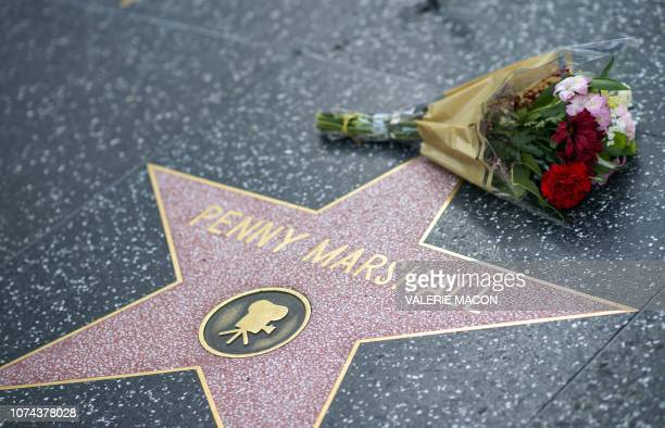 Fans leave tributes on Penny Marshall's star on the Hollywood Walk of Fame shortly after the news that the actress died aged 75 was made public in...