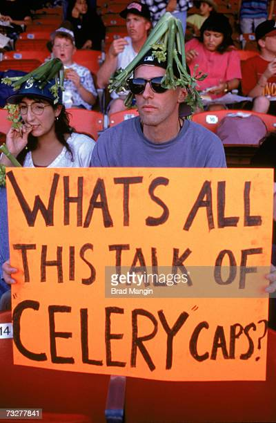 "Fans make fun of the ""celery caps"" in baseball on the eve of a Major League Baseball strike before the game between the Seattle Mariners and the..."