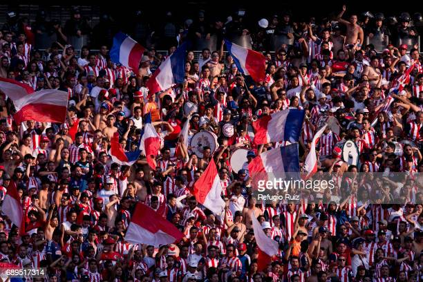 Fans of Chivas cheer for their team during the Final second leg match between Chivas and Tigres UANL as part of the Torneo Clausura 2017 Liga MX at...