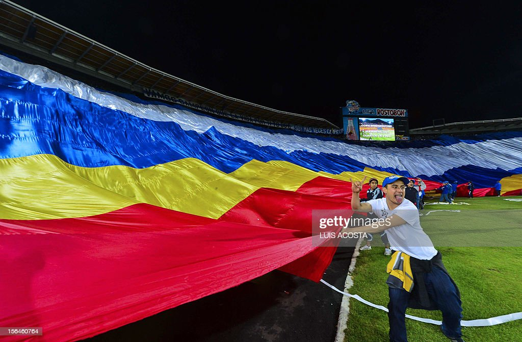 Fans of Colombian Millonarios flutter a giant flag before their Copa Sudamericana quarterfinal football match against Brazilian Gremio at El Campin stadium in Bogota, Colombia, on November 15, 2012. AFP PHOTO/Luis Acosta