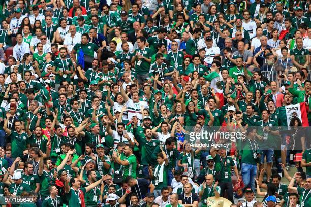 Fans of Mexico are seen during the 2018 FIFA World Cup Russia Group F match between Germany and Mexico at the Luzhniki Stadium Moscow in Moscow...