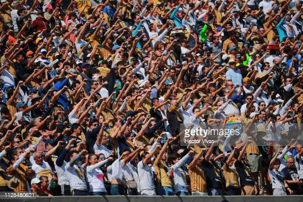 Fans of Pumas cheer for their team during the seventh round match between Pumas UNAM and America as part of the Torneo Clausura 2019 Liga MX at...