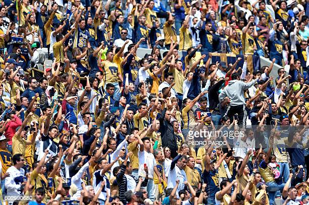 Fans of Pumas cheer for their team during their Mexican Apertura 2016 tournament football match at University stadium on September 11 in Mexico City...