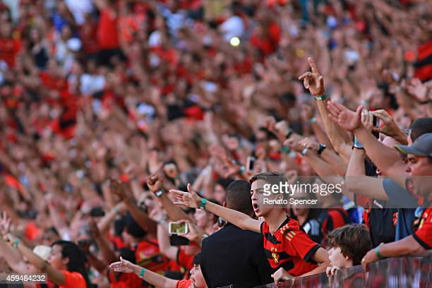 Fans of Sport Recife cheer before a match between Sport Recife and Fluminense as part of Brasileirao Series A 2014 at Arena Pernambuco on November 23...