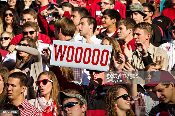 Fans of the Arkansas Razorbacks during a game against the Auburn Tigers at Razorback Stadium on November 2, 2013 in Fayetteville, Arkansas. The...