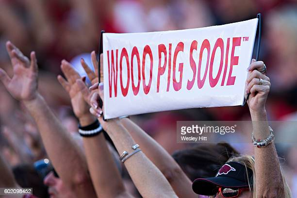 Fans of the Arkansas Razorbacks wave their Wooo Pig Sooie signs during a game against the Louisiana Tech Bulldogs at Razorback Stadium on September...