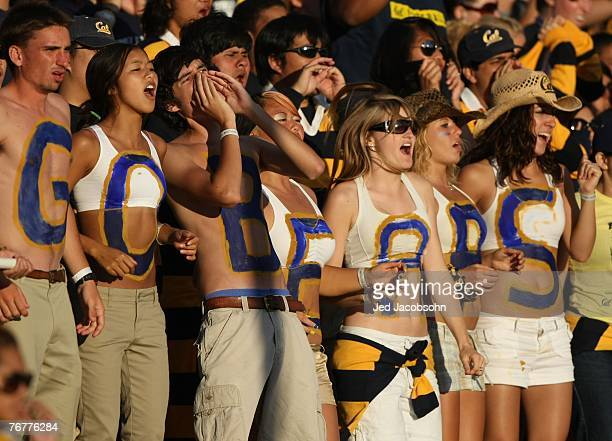 Fans of the California Golden Bears cheer against the Louisiana Tech Bulldogs during an NCAA football game on September 15 2007 at Memorial Stadium...