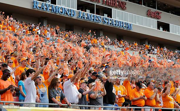 Fans of the Tennessee Volunteers celebrate during the second half of the Outback Bowl against the Northwestern Wildcats at Raymond James Stadium on...