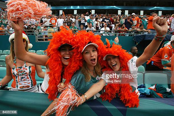 Fans show their support as the San Francisco 49ers take on the Miami Dolphins at Dolphin Stadium on December 14 2008 in Miami Florida The Dolphins...