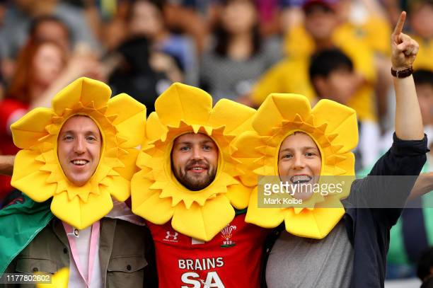 Fans show their support prior to the Rugby World Cup 2019 Group D game between Australia and Wales at Tokyo Stadium on September 29 2019 in Chofu...