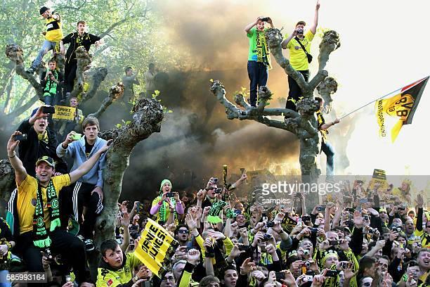 Fans sitzen auf den Bäumen und jubeln ihrer Mannschaft zu Double Sieger Doublesieger Meister und Pokal Sieger Borussia Dortmund 2012 auf den...