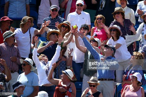 Fans try and grab a tennis ball during day four of the Nature Valley International at Devonshire Park on June 27, 2019 in Eastbourne, United Kingdom.