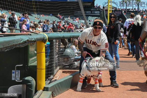 Fans' walk their dog's around the field in celebration of dog day before the St Louis Cardinals and the San Francisco Giants on July 7 2019 at Oracle...