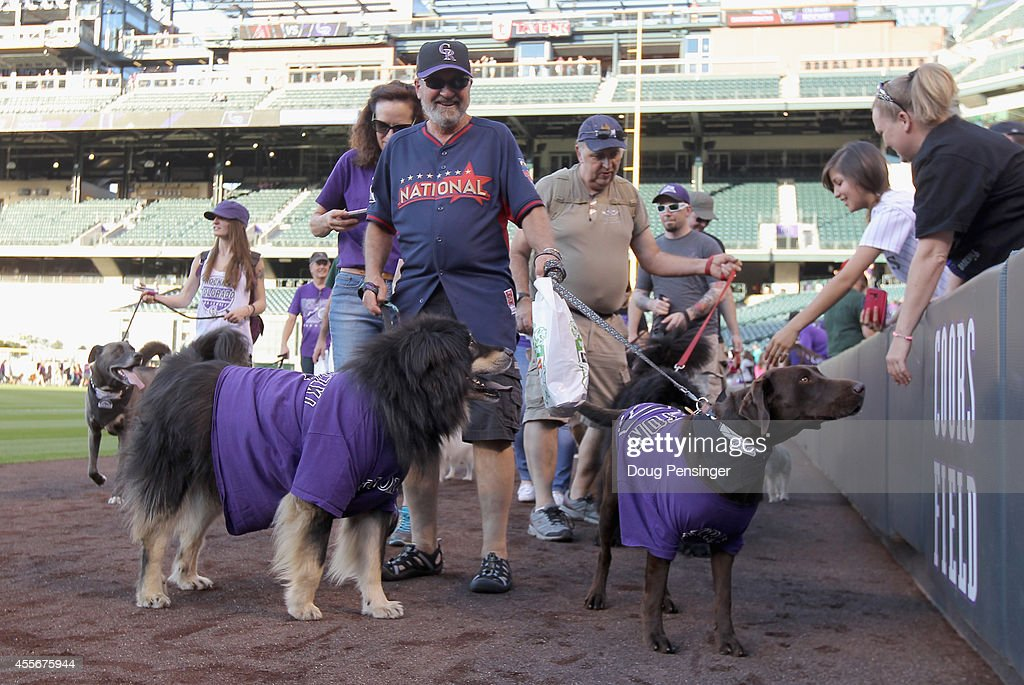 Fans walk their dogs around the warning track as part of Bark at the Park night before the Arizona Diamondbacks face the Colorado Rockies at Coors Field on September 18, 2014 in Denver, Colorado.
