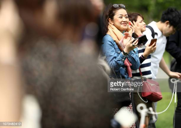 Fans watch a Melbourne Victory ALeague training session at Gosch's Paddock on November 28 2018 in Melbourne Australia