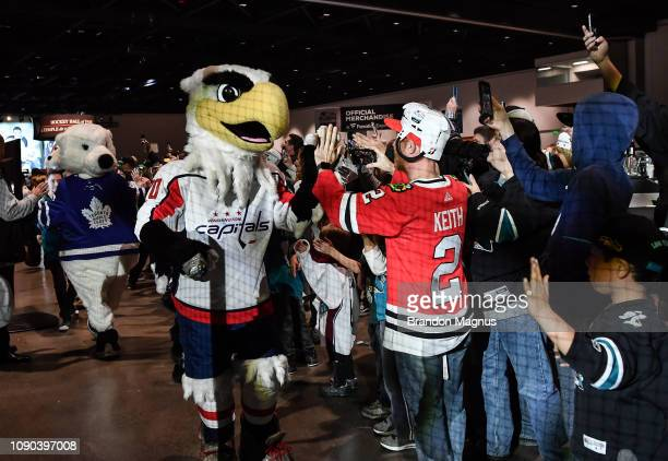 Fans watch as mascots enter the rink during the NHL Mascot Showdown at San Jose McEnery Convention Center on January 27 2019 in San Jose California