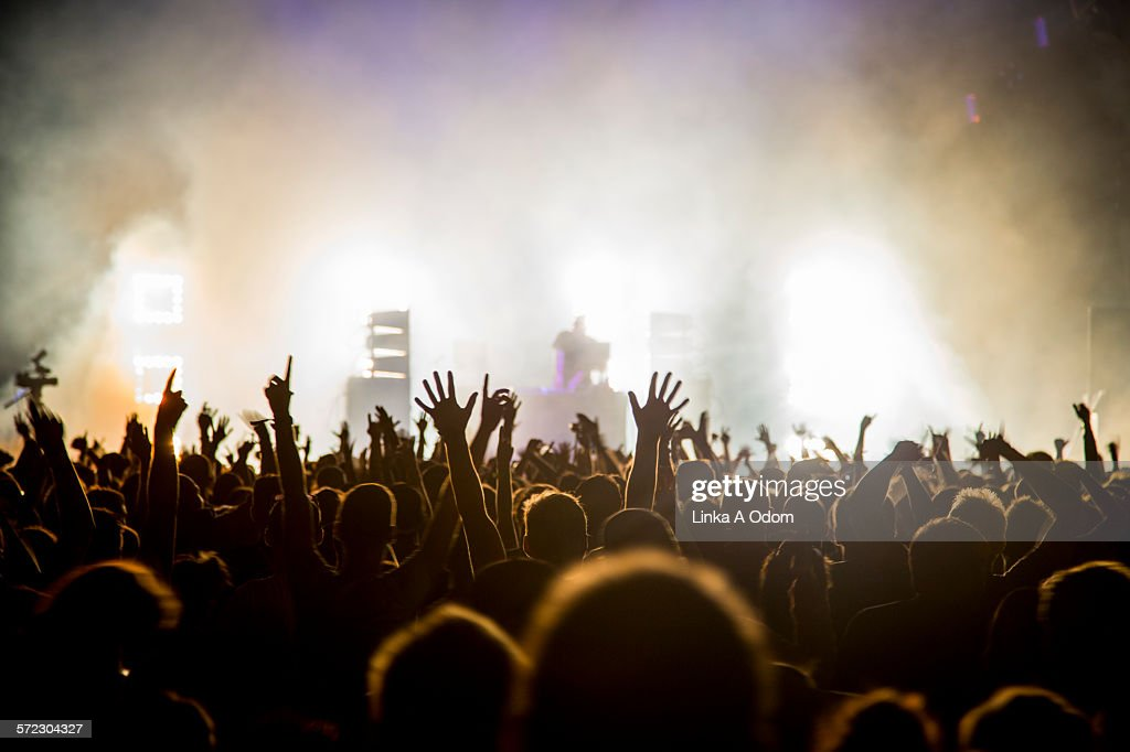 Fans with raised arms at music Festival : Foto stock
