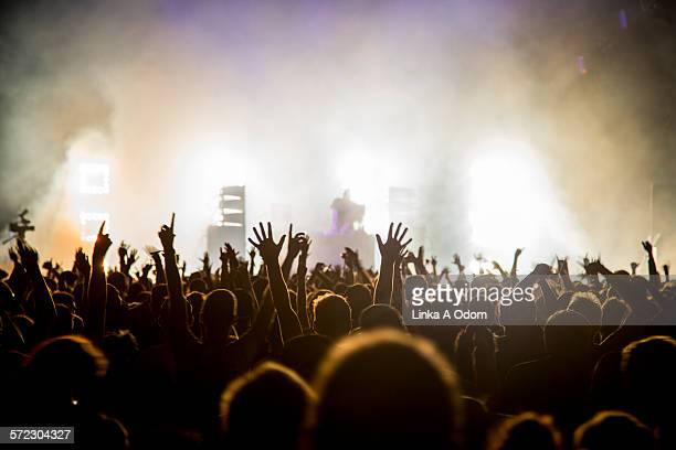 fans with raised arms at music festival - konzert stock-fotos und bilder
