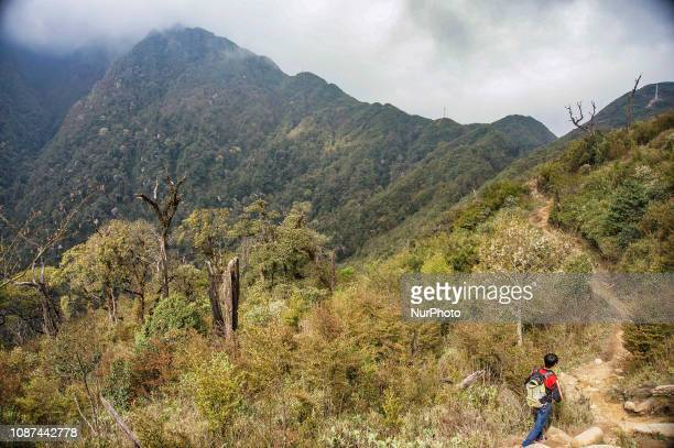 Fansipan mountain in Vietnam with the highest peak reaching 3143 metres high It is the highest mountain in the Indochina Since February 2 2016 the...