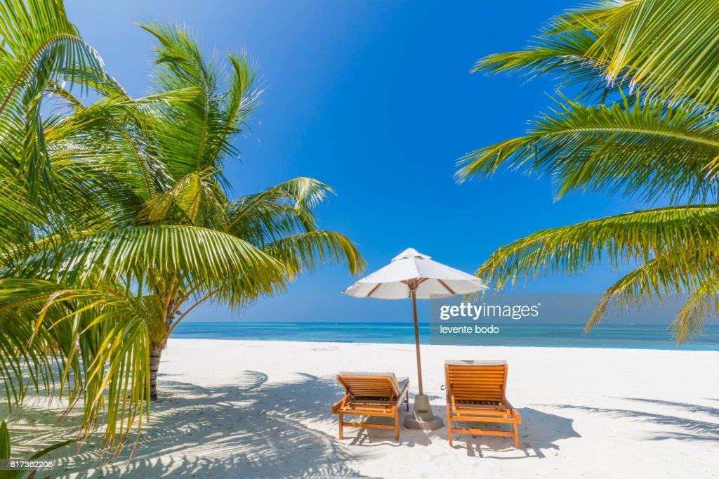 Fantastic Beach Landscape Maldives Scene With Blue Sky White Sand And Palm Trees