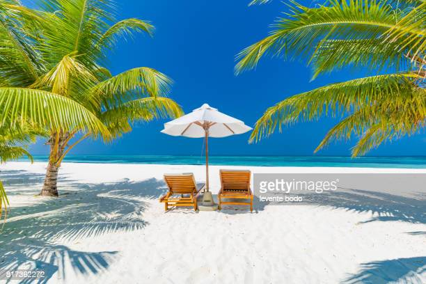 Fantastic beach landscape. Maldives beach scene with blue sky, white sand and palm trees