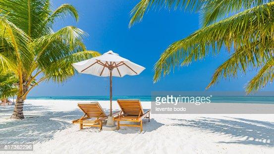 Fantastic Beach Landscape Maldives Scene With Blue Sky White Sand And Palm Trees Stock Photo
