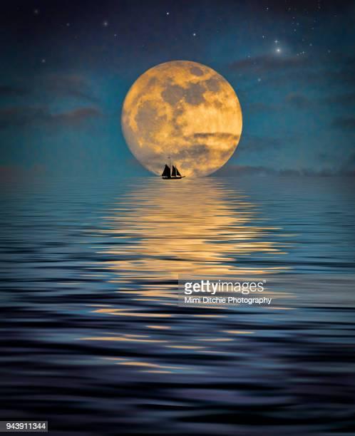 fantastic moonlight - luz de la luna fotografías e imágenes de stock