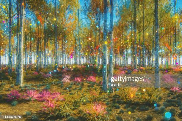 fantasy forest - ethereal stock pictures, royalty-free photos & images