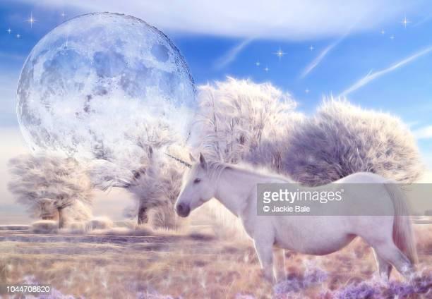 fantasy unicorn - mythology stock pictures, royalty-free photos & images