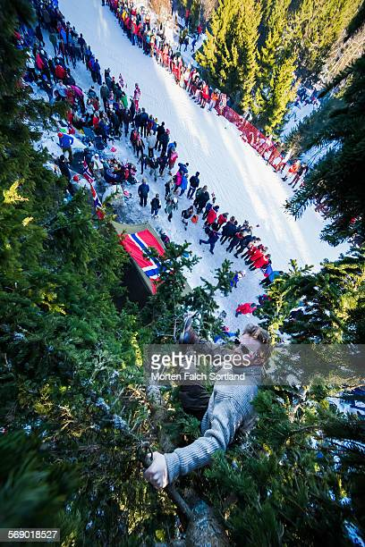 far above the crowd - norwegian flag stock pictures, royalty-free photos & images