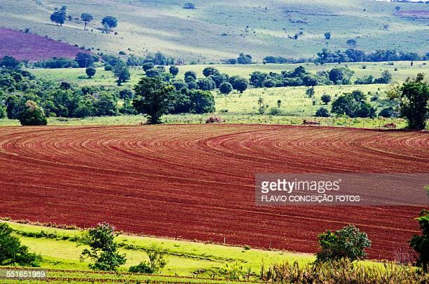 Farm agriculture brazil